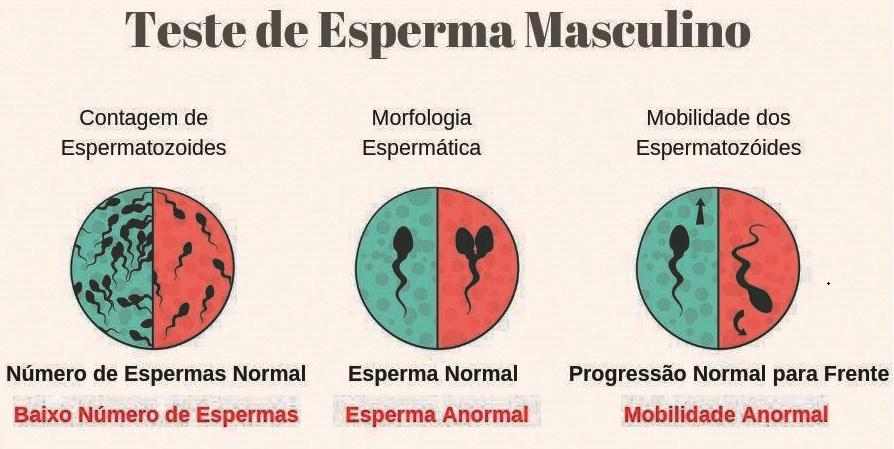 A infertilidade masculina